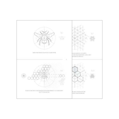Intuitive Geometry Bee package - how to draw a bee with overlapping circles