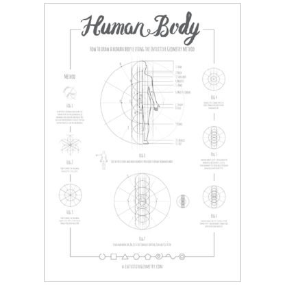 Intuitive Geometry Human Body package - how to draw a human body with overlapping circles