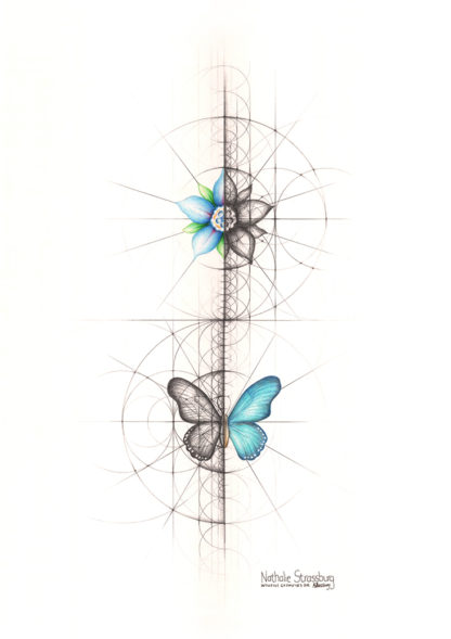 Nathalie Strassburg Original Intuitive Geometry Butterfly and Flower Art