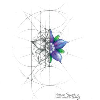 Nathalie Strassburg Original Intuitive Geometry Borage Flower Art