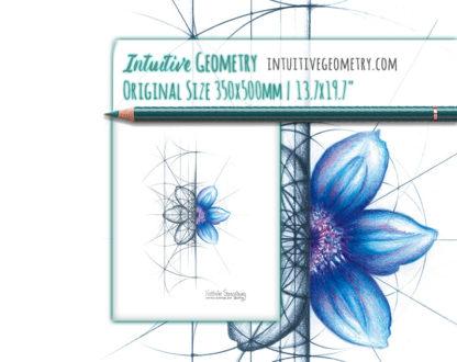Nathalie Strassburg Original Intuitive Geometry Clematis Flower Art