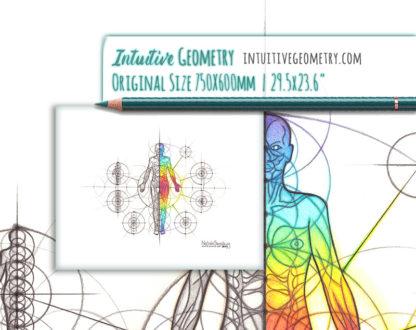 Nathalie Strassburg Original Intuitive Geometry Human Anatomy Art - Body