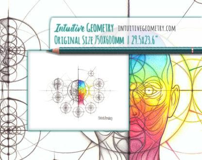 Nathalie Strassburg Original Intuitive Geometry Human Anatomy Art - Head