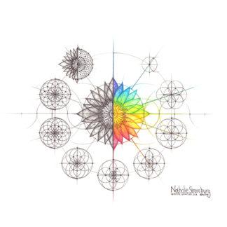 Nathalie Strassburg Original Intuitive Geometry Lotus Art