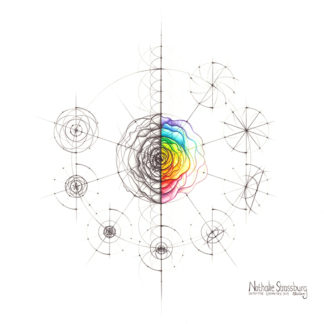 Nathalie Strassburg Original Intuitive Geometry Rose with steps Art