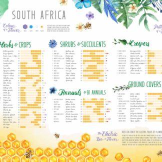 Plants for Bees South Africa by Nathalie Strassburg