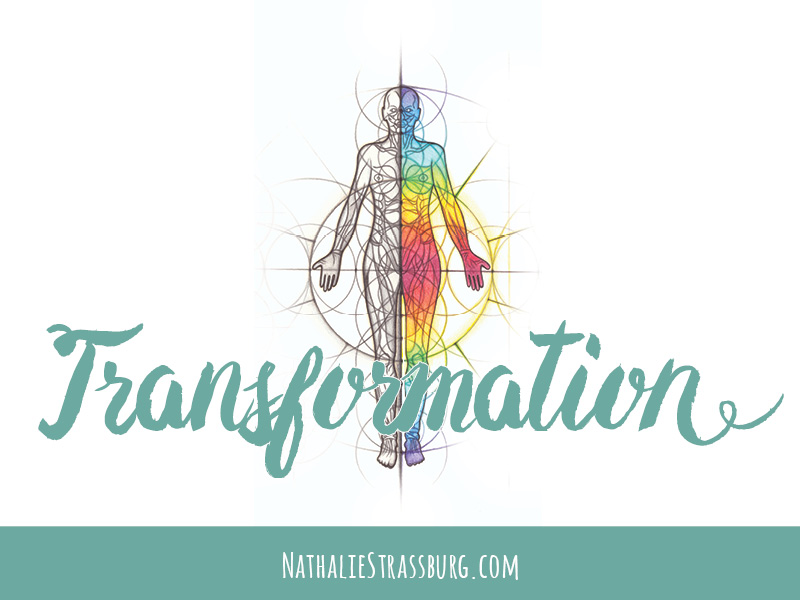 The Human Transformation Process by Nathalie Strassburg