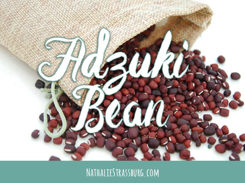 Adzuki Bean Growing Guide